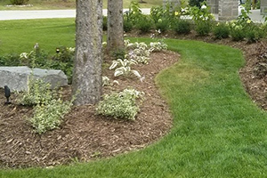 Landscape Design, Construction & Maintenance Services